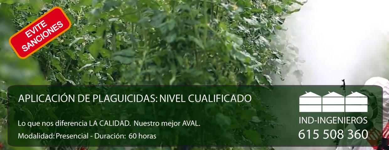 PRESENCIAL NIVEL CUALIFICADO