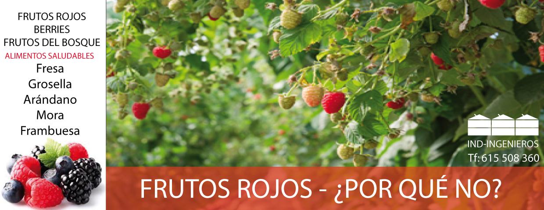 IND INGENIEROS, ALMERÍA, PROYECTOS